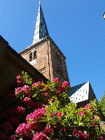 Marienkirche Rückseite mit Rhododendron IMG-20170602-WA0001 klein.jpg