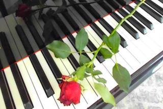 Klaviertasten mit Rose 1 klein.jpeg