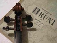 Viola+Noten 2a.jpg