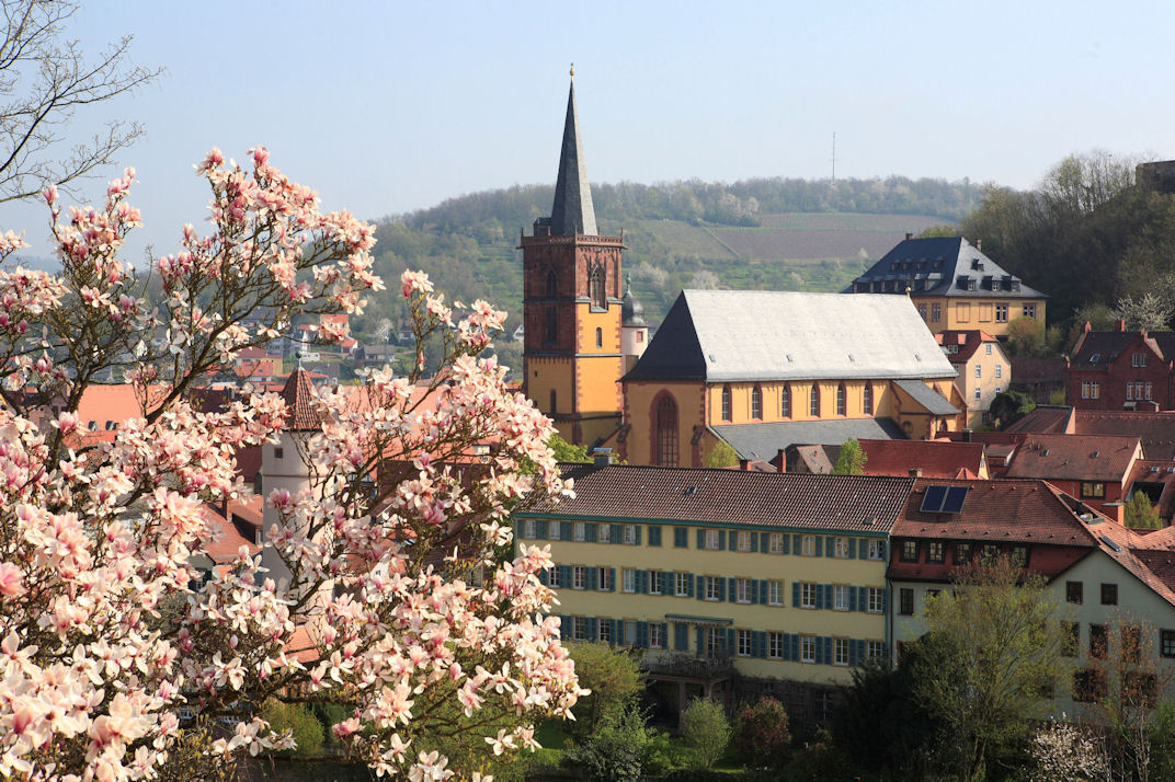Stiftskirche 2.jpg