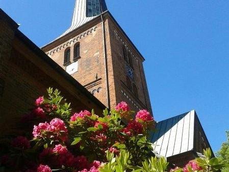 Marienkirche Nordseite / Foto Teegen