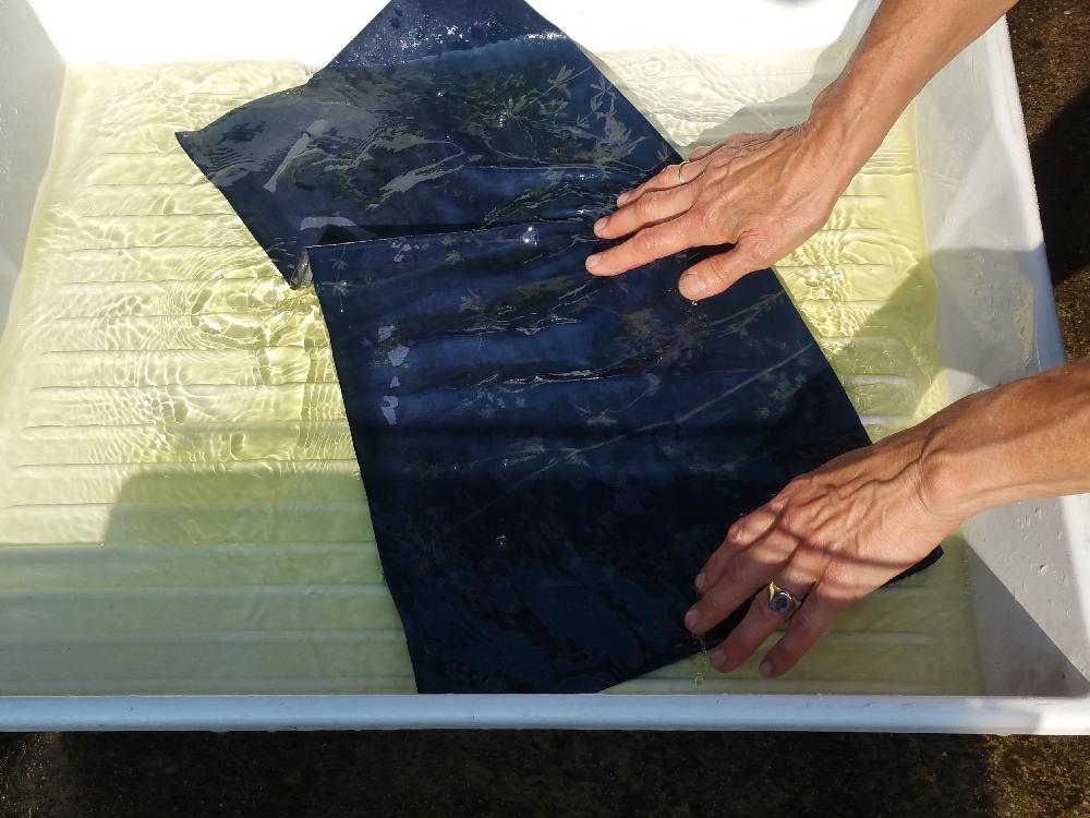 In den nicht belichteten Partien lässt sich die Beschichtung einfach auswaschen und das Motiv wird deutlich sichtbar.